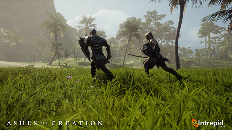 Ashes of Creation MMORPG Screenshot Fighter